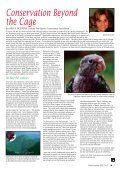 Parrots in the Wild - World Parrot Trust - Page 5
