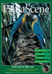 Celebrating our 50th Issue! - World Parrot Trust