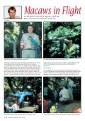 Celebrating our 50th Issue! - World Parrot Trust - Page 4