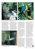 Celebrating our 50th Issue! - World Parrot Trust - Page 5
