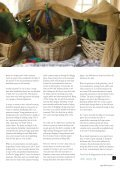 PS 20 1 Feb 08.qxd - World Parrot Trust - Page 4
