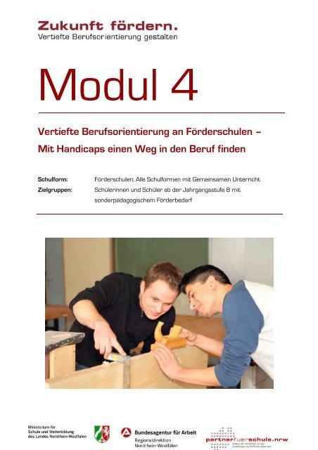 Vertiefte Berufsorientierung an Förderschulen - Stiftung Partner für ...