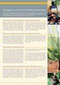 Weiße Biotechnologie – die Erfolgsgeschichte geht weiter - Dechema - Seite 3