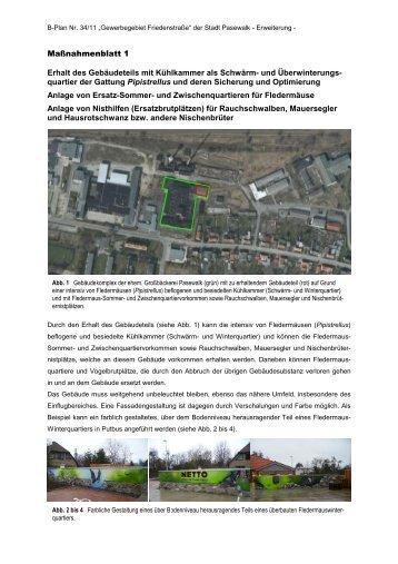 Maßnahmenblatt 1 - Stadt Pasewalk