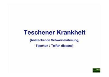 63_Teschener_Krankheit