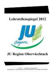 Lehrstellenspiegel 2012 JU Region Oberviechtach - Eisenbarth-Kurier