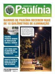 bairros de paulínia recebem mais de 10 quilômetros de iluminação