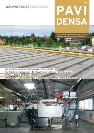 Die Basis für weitere Entwicklungsschritte schaffen Die ... - Pavidensa