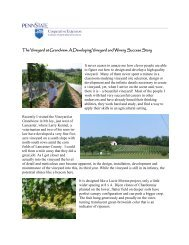 The Vineyard at Grandview - PA Wine Grape Growers Network