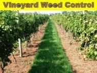 Vineyard Weed Control - PA Wine Grape Network