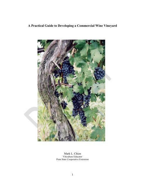 for wines,cold hardy buy 2 get 1 free Organic  Vitis /'Frontenac Grape 15 seeds