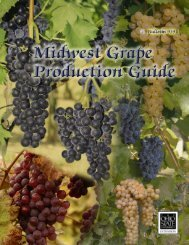 Midwest Grape Production Guide - Ohio Agricultural Research and ...
