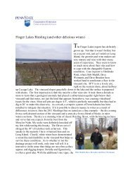 Finger Lakes Riesling (and other delicious wines) - PA Wine Grape ...