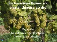 Early-season Flower and Cluster Disease Control - PA Wine Grape ...
