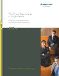 TransPromo Opportunities in a Digital World - Pitney Bowes Software