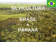 SILVICULTURA BRASIL PARANÁ - UTFPR