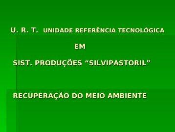 """PROJETO – """"S. S. P"""". SILVIPASTORIL. (SISTEMA ... - UTFPR"""