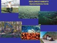 REFLORESTAMENTO Aposentadoria Verde - UTFPR