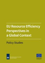 EU Resource Efficiency Perspectives in a Global Context