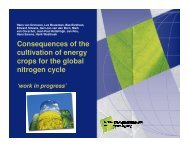Consequences of the cultivation of energy crops for the global ...