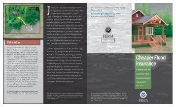 Cheaper Flood Insurance Brochure