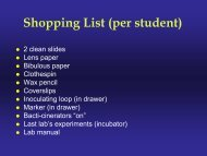 Shopping List (per student)