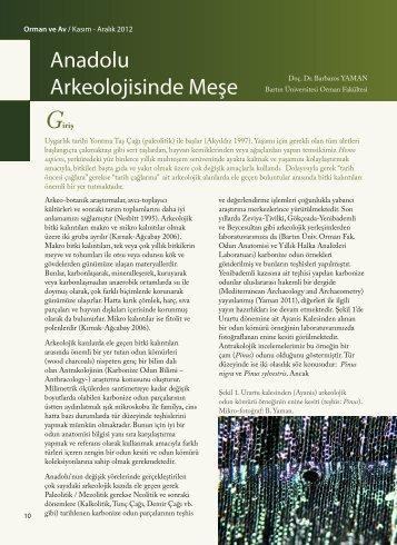 Anadolu Arkeolojisinde Meşe - PDF Archive
