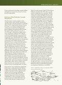 Anadolu Arkeolojisinde Meşe - PDF Archive - Page 2