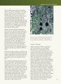 Anadolu Arkeolojisinde Meşe - PDF Archive - Page 4