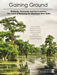 Earth Economics Mississippi River Delta - Portland State University