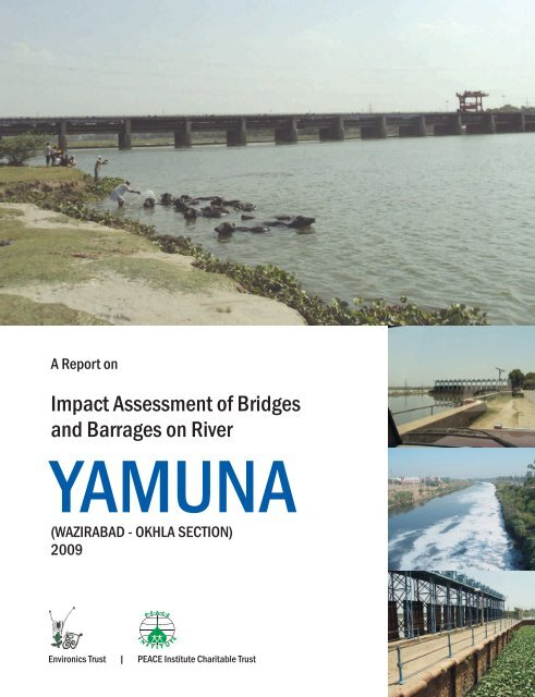 Impact Assessment of Bridges and Barrages on River Yamuna.pdf