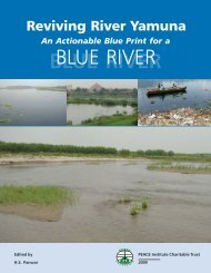 An Actionable Blue Print for a 'Blue River' - PEACE Institute ...