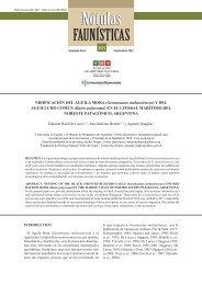 NIDIFICACIÓN DEL ÁGUILA MORA (Geranoaetus melanoleucus) Y DEL AGUILUCHO COMÚN (Buteo polyosoma) EN EL LITORAL MARÍTIMO DEL NORESTE PATAGÓNICO, ARGENTINA