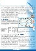 Numéro 19 - Site de la pêche - Page 5
