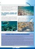 Numéro 19 - Site de la pêche - Page 7