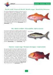 Utu - Aprion verdâtre - Green Jobfish - Aprion virescens Haamea ...