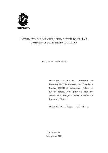 COPPE/UFRJ INSTRUMENTAÇÃO E CONTROLE DE UM SISTEMA ...