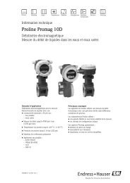 Proline Promag 10D - PEI-FRANCE.com