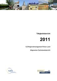 Tätigkeitsbericht 2011 - Peine