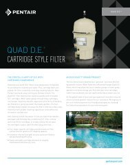 QUAD D.E.® CARTRIDGE STYLE FILTER - Pentair