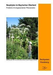Neophytenbroschüre Bachpaten-Penzberg ebook
