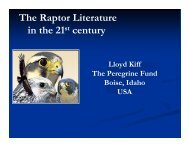 The Raptor Literature in the 21st century - The Peregrine Fund