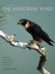 2000 Newsletter - The Peregrine Fund