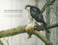 2000 Annual Report - The Peregrine Fund