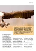 Mechanisms of coexistence in vultures - The Peregrine Fund - Page 4