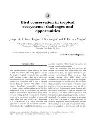 Bird conservation in tropical ecosystems - Department of Biology ...
