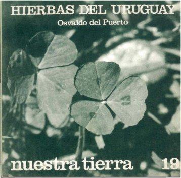 Nº 19 - Publicaciones Periódicas del Uruguay