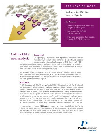 Analysis of Cell Migration using the Operetta