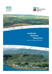 Landscape Character Assessment Guidance for England and ...