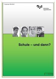 Fragebogen BGJ/BGS (DJI) 03_2011 - Perspektive Berufsabschluss